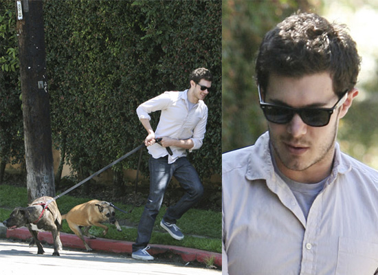 Adam Brody Hair. Gorgeous Adam is going to be